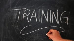 Adult Mental Health First Aid Training @ Newport News Education Office   Newport News   Virginia   United States
