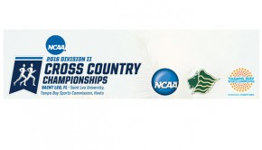 NCAA Cross Country Championship