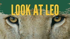 """Look at Leo"" @ University Campus"