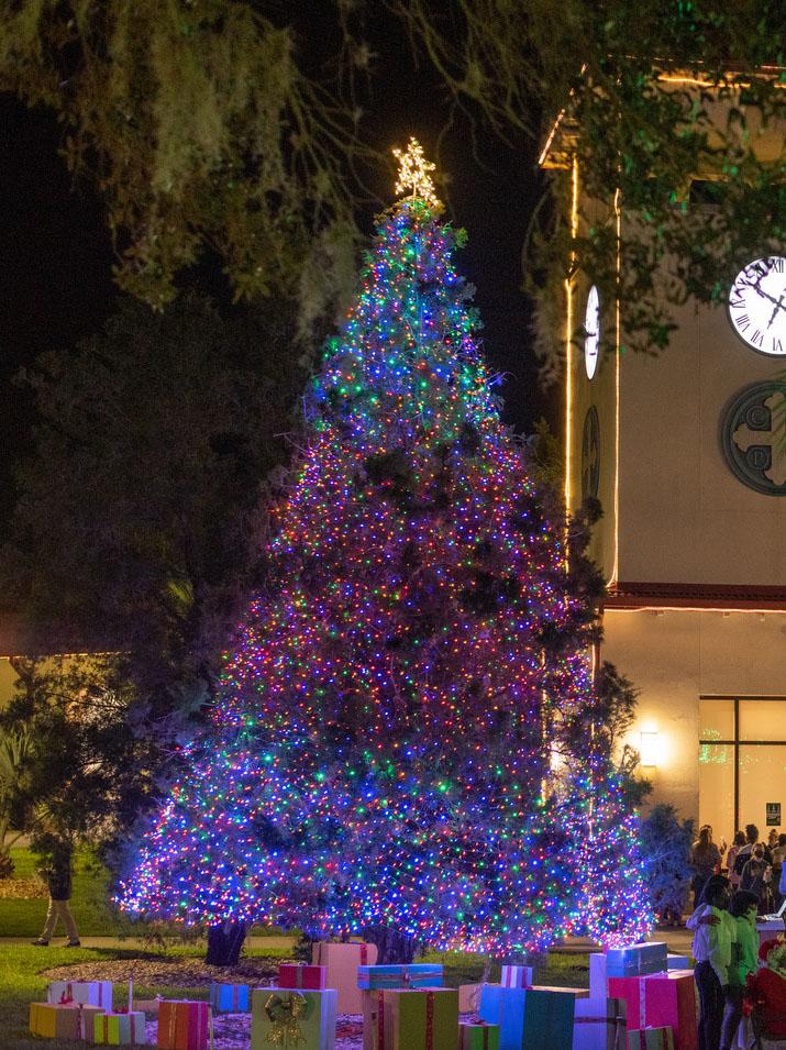 11-18-2020_Christmas Tree Lighting-_ASP4048_edited